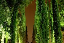 Masia Egara Red Garden