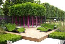 Garden and Ideas