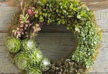 Cool wreaths