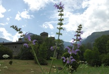 Valle d'Aosta - Discovered / Thousand years of history: a heritage to be discovered