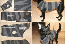 Kutya ruha