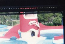 SeaWorld Orlando August 1990 trip / by Jaclyn Reynolds