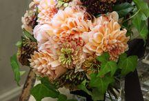 orange and peach flower