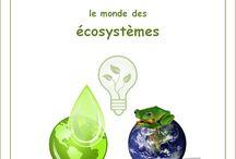 Le monde des écosystèmes / Lapbook sur les biomes et écosystèmes de l'Association Carpe Diem