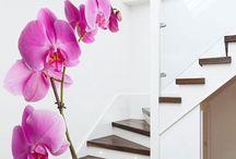Dublex stair