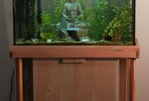 Here fishy, fishy / by Lesley Fujimoto