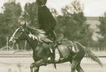 Cowboyz n Bullz n Rodeo Gals