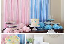 Shower/Gender Reveal  Party