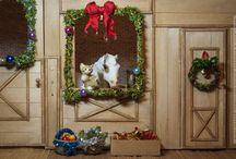 Model Horse (Breyer, Schleich, other): Winter, New Year / Здесь будут находиться постановки на зимнюю и Новогоднюю тематику.