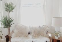 Cosy ideas / Fur decor