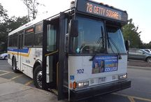 Bee-Line Westchester County Transit Ads
