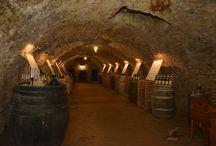 WineAtrium Bohemia Zámek Mělník / WineAtrium Bohemia Zámek Mělník http://www.lobkowicz-melnik.cz/ wine,