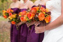 10/4/14 / Purple is the new orange