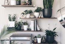 Decoração com plantas - Plant decoration