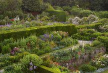 Garden, Glorious Garden !