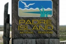 ~ Padre Island National Seashore ~ / favorite seashore to go 4 ~ wheelin' in my Jeep