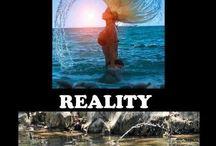 Expextations vs Reality