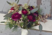 Weddings~Winter Berry / For Cory Sutherland And Jenna Baines