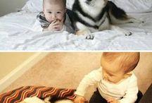 babák ęs kutyuskák