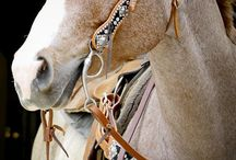 Rodeo tack ideas