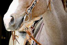 Vybavení Pro Jízdu Na Koně