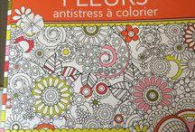 Coloriages / Idées coloriages fleurs / Idée coloriage fleur / couleurs / couleur