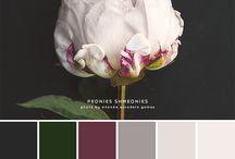 Color Palettes / Different color palettes