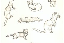 Mustelids are the best antidepressants / Ferrets, weasels, otters, badgers and much more!! Always frenetic always happy, is because of this why Mustelids are the Best Antidepressants  ever!!  Follow the hastag #mustelidsarethebestantidepressants on my IG @belettelepink