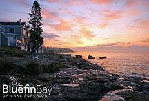 MSP Bluefin Bay Getaway Pinfest / by Jean Carlisle