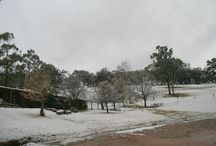 Snow in the Megalong Valley / In July 2015 a once in a lifetime fall of snow blanketed Megalong Valley Farm