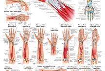 Terapie fizică