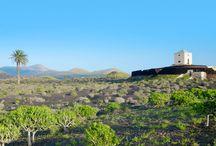 Lanzarote / En rejse til Lanzarote er fyldt af magiske oplevelser. Lanzarote er måske den mest stilfulde ø af De Kanariske Øer, med gennemtænkt arkitektur i harmoniske farveskalaer. Her venter dejlige strande og et spændende vulkanlandskab. Se mere på www.apollorejser.dk/rejser/europa/spanien/de-kanariske-oer/lanzarote