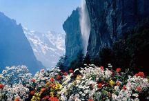 Beautiful Lauterbrunnen / My new happy place