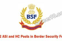 BSF Posts
