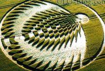 Art - Crop Circles