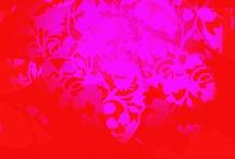 Color- Fuchsia