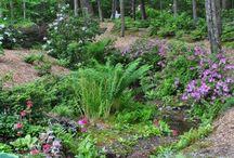 Zahrada & Permakultura