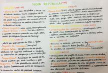 estudo e letra