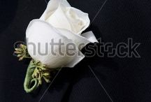 Floral Arranging / by Ann Leete
