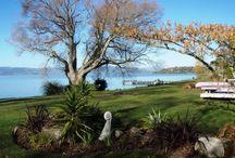 Luxury Rotorua Holiday Homes / Rotorua Holiday Rentals