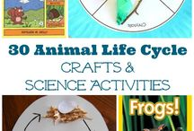 Creative/Construcive Activities Children
