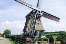 Holandia 2014
