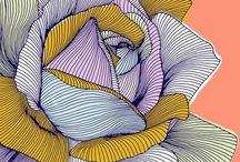 Illustrations flowers