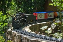 Trains - Real, Layout, Garden / by Betty Grandt