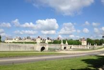 Fontainebleau / La commune, qui s'étend sur 17 205 hectares, est la plus vaste de la région Île-de-France. Vous pouvez notamment y découvrir le Château et la Forêt de Fontainebleau.
