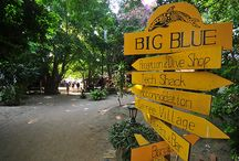 Big Blue Diving Resort / The home to Big Blue's divers, free divers and technical divers!