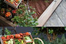 ♥ Fairy Garden Ideas ♥