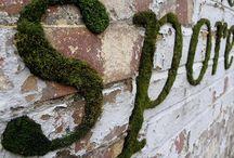 Graffiti: Green Style