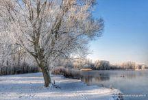 Winter in Rotterdam Zevenkamp / Winterplaatjes Rotterdam Zevenkamp
