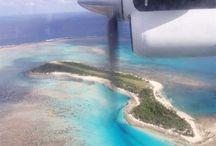 pentecost island bungee